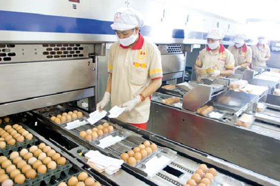 xuất khẩu lao động Nhật Bản ngắn hạn